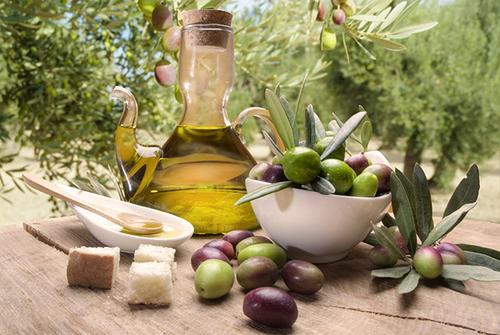 Tasting olive oil and freshly harvested olives.