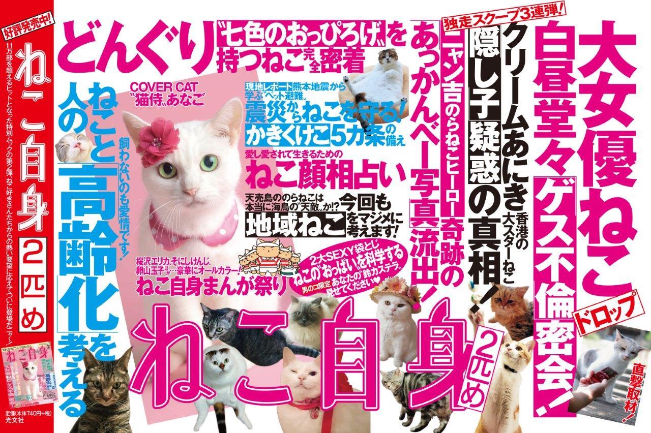 猫自身2匹目発売!