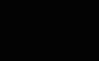 ブラックボックス展