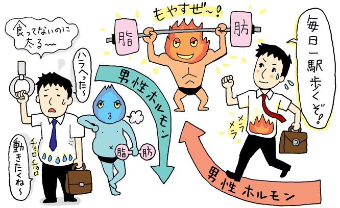 【医師監修】脱デブ 内臓脂肪を減らせ!