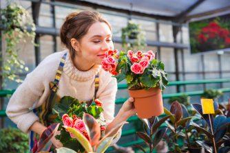 初心者ガーデニングに。育てやすいのに可愛い花6選