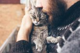 【初心者必見】猫の性格まとめと、仲良くなるために必要な3つのコト!