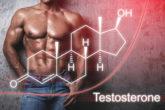 今すぐできる!テストステロンを増やす方法大全集【男性ホルモン】