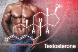 【誰でもできるテストステロンを増やす方法大全集】モテる男の87%は取り入れている!