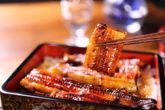 うなぎは関西と関東で調理法が違う!美味しいのはどっち!?
