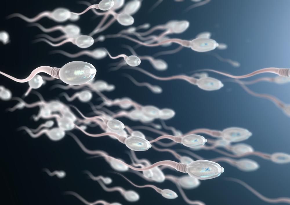 精子を見ないと損をする!?「テンガルーペ」を使えば自分の精子をセルフで観察できる!