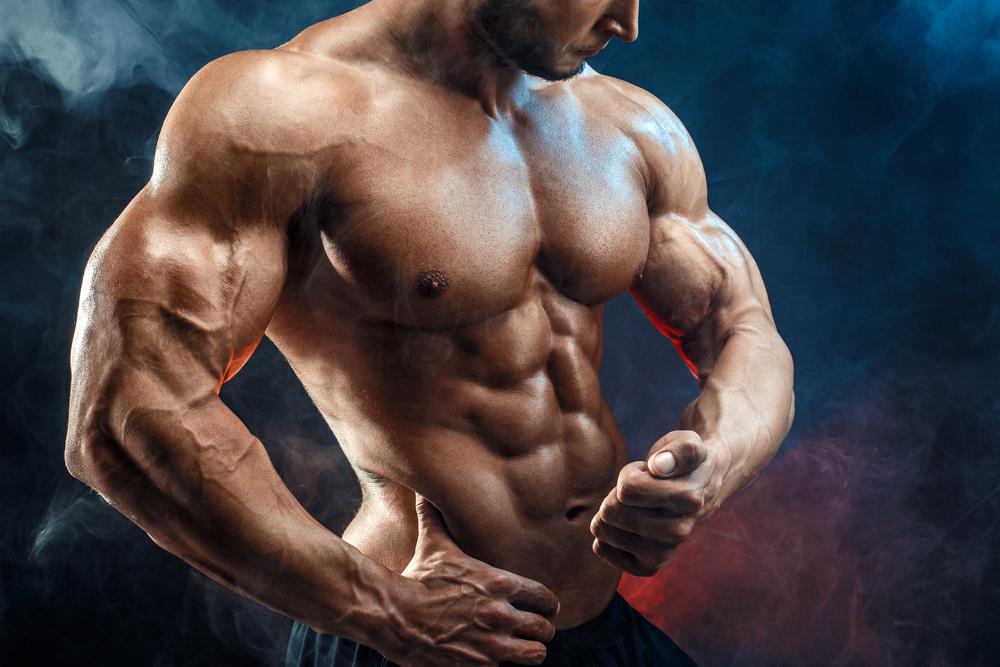 【初心者でもすぐわかる筋肉の部位名称図鑑】パッと確認したいときはこれ!