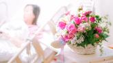 【お見舞いのタブー】診療科によっては生花がNG!!看護師が教える贈って良い花&駄目な花
